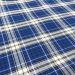 Blue/White BIG Plaid